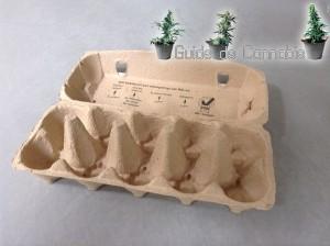 boite-oeufs-germination
